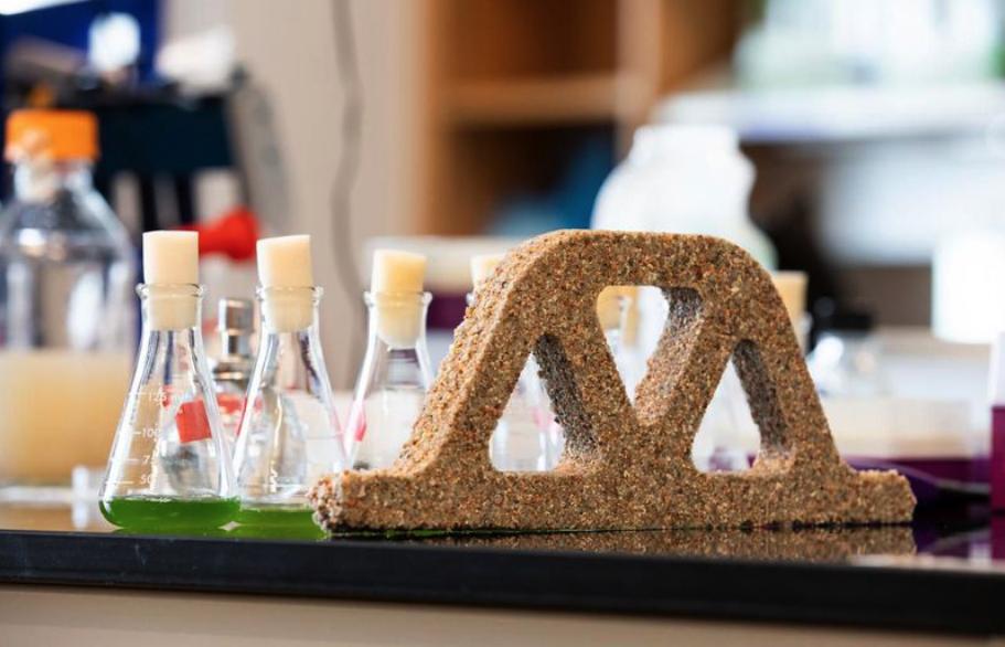 Concreto vivo, el material de construcción a base de bacterias que se reproduce